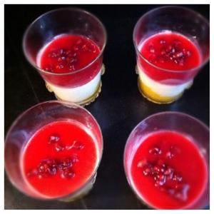 Pannacotta pana cotta mangue grenade recette saveurs printemps été italie vanille fruits desserts facile