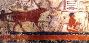 Vache lait egypte antique ancienne histoire de l'alimentation tradition nourriture