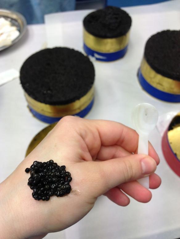 Kaviari caviar esturgeon noir oeufs elevage sauvage maison oscietre baeri beluga schrenki bulgarie prestige luxe chine nacre degustation