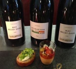 Mas belles eaux vins rose rouge vignoble languedoc mourvedre grenache sainte helene capsule vis vin coteaux