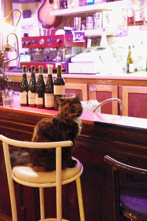 La casserole restaurant paris enzo duchesne chef jeune savoie bistrot français cuisine gastronomique nouveau chat