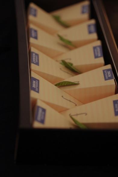 Tea forte maison the sachet pyramide design feuille celine aime celinem noir collection