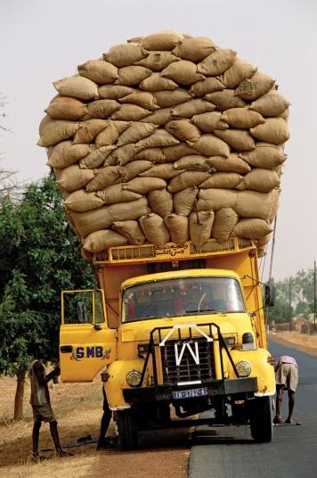 Quel futur pour notre alimentation feillet  afrique avenir