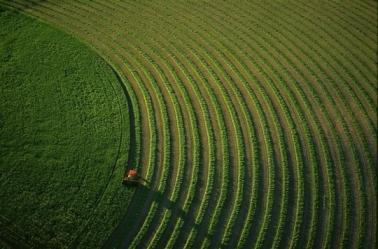 Quel futur pour notre alimentation feillet agriculture
