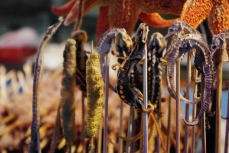 brochettes d'insectes en chine : le futur de notre alimentation